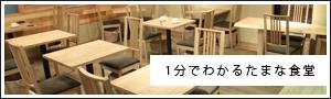 1分でわかるたまな食堂